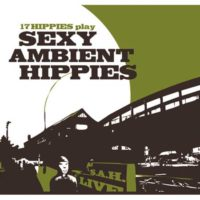17 Hippies play SEXY AMBIENT HIPPIES